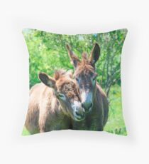 Pair of Donkeys Throw Pillow