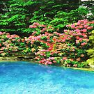 Rhododendrons At Pool  by daphsam
