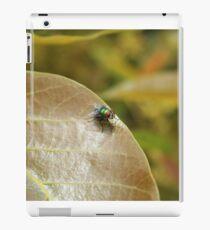 Fly on a Brown Leaf iPad Case/Skin