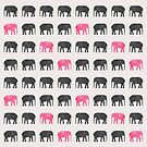 Elephant Walk by Kanika Mathur  Design