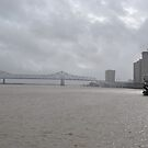 Mississippi River at New Orleans by Jennifer  Causley