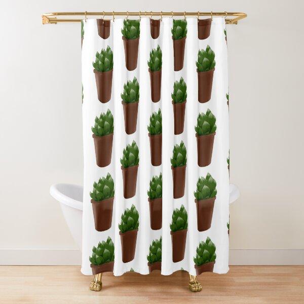 Zebra plant Haworthia Shower Curtain