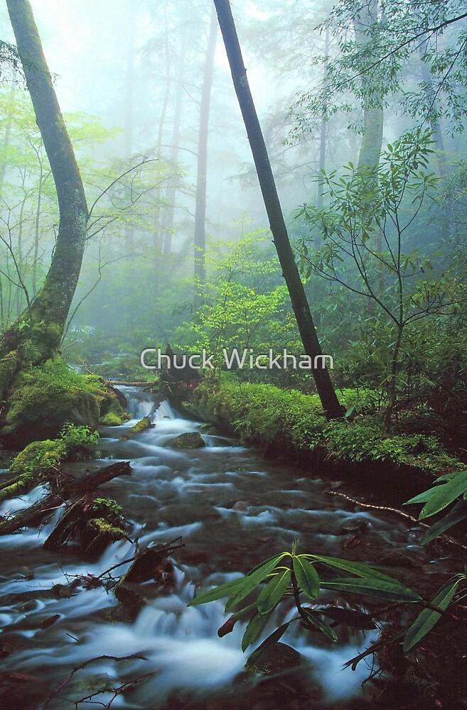MISTY STREAM by Chuck Wickham