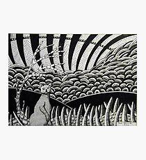 260 - CAT DESIGN - DAVE EDWARDS - INK - 2016 Photographic Print