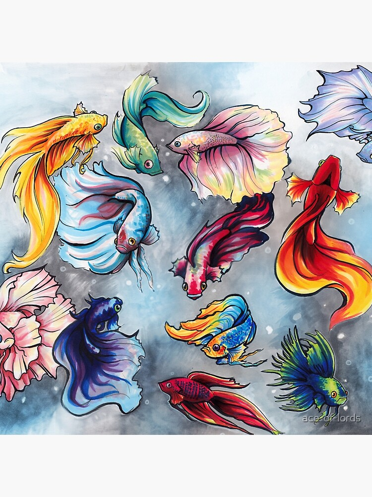 Betta Fish by ace-of-lords