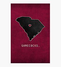 Gamecocks Photographic Print