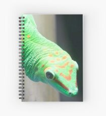 Gecko Relative Spiral Notebook