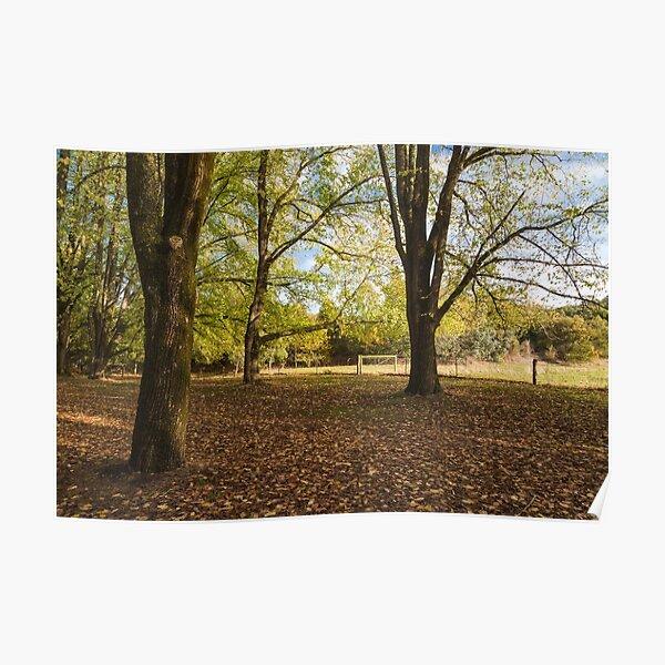 Daylesford Autumn Poster