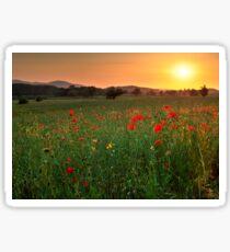 Poppy fields, Worcestershire Sticker