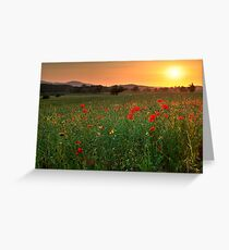 Poppy fields, Worcestershire Greeting Card