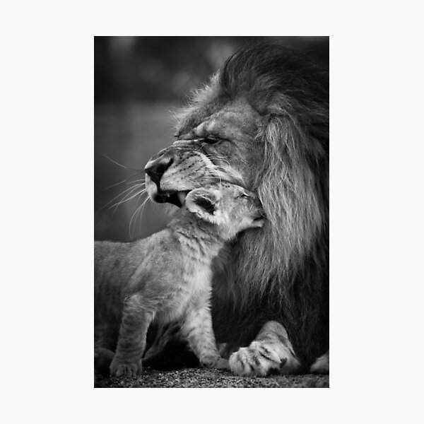 Love you dad Photographic Print
