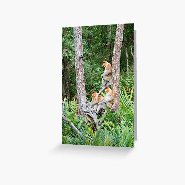 Proboscis Monkey group Greeting Card