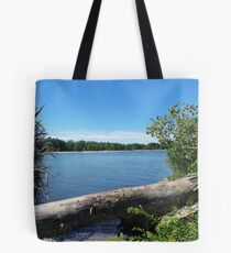Lake Erie At Sheldon Marsh Tote Bag
