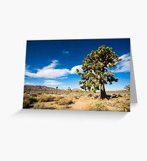 Lonely Joshua Tree Greeting Card