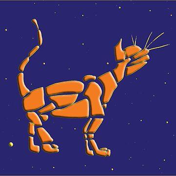 Cat Universe in Orange by JimmyGlenn