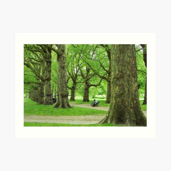 Green Park, London. Art Print