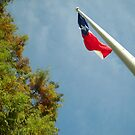 Texas by sixclawsdragon