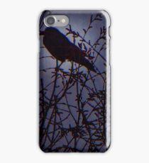 Once Upon A Midnight Dreary iPhone Case/Skin