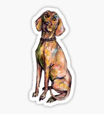 Hungarian Vizsla Dog Sticker