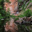 Canyon Tranquility by Sue  Cullumber