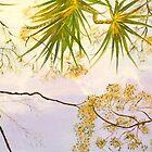Canopy Dreaming by gunnelau