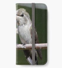 annas hummingbird iPhone Wallet/Case/Skin