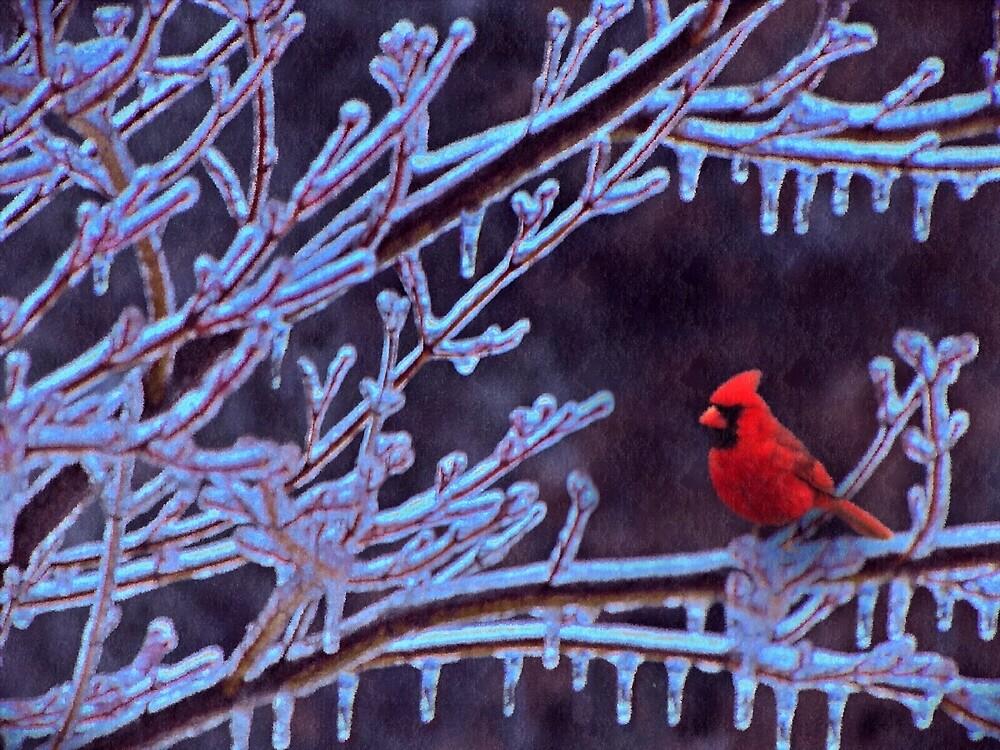 Ice Storm In Pennsylvania by David Dehner