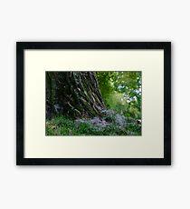 Fluffy Tree Framed Print