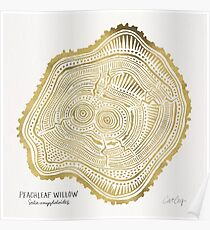 Peachleaf Willow – Gold Tree Rings Poster
