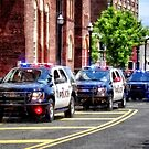 Line of Police Cars by Susan Savad