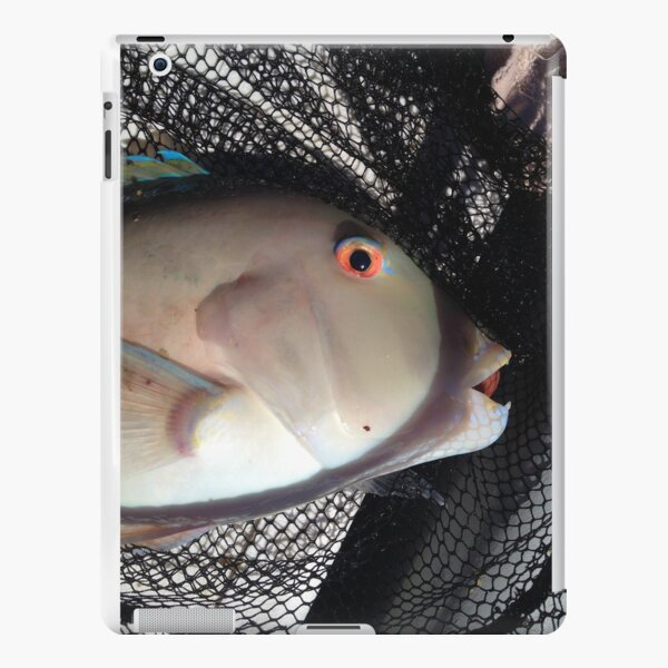 Amazing colored fish eyes iPad Snap Case