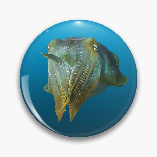 Tintenfisch | Farbenspiel auf blauem Hintergrund |  Button