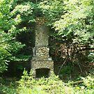 Old Chimney by Deborah Pritchett