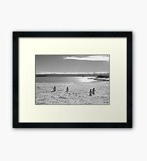 Penguin black and white Framed Print