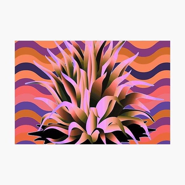 Groovy Agave Succulent Century Plants Photographic Print