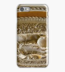 Astley Hall ceiling iPhone Case/Skin