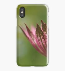 Astrantia Macro iPhone Case/Skin