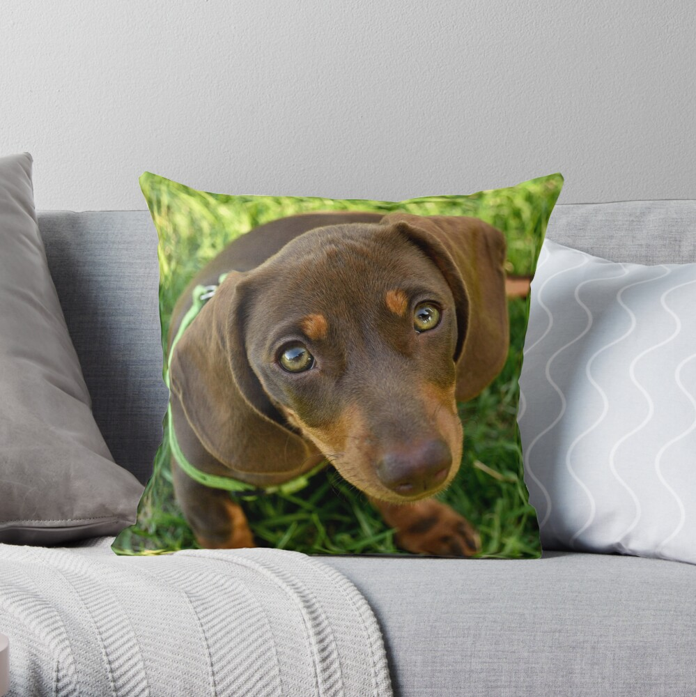 Puppy Face! Throw Pillow
