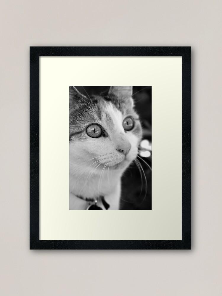 Alternate view of Focus Framed Art Print
