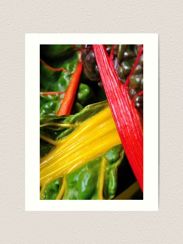 Alternate view of Colourful Greens Art Print