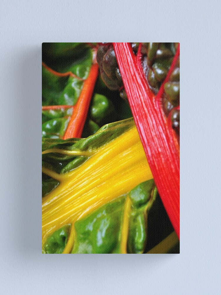 Alternate view of Colourful Greens Canvas Print