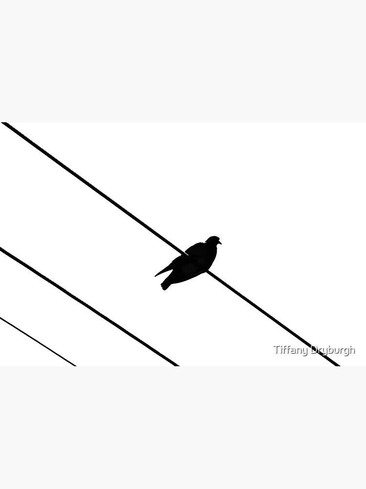 Bird on a Wire by Tiffany