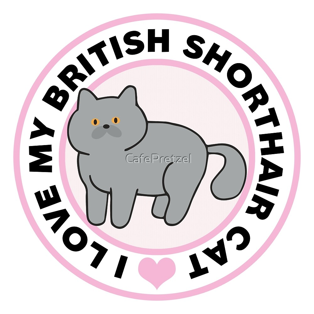 British Shorthair Cat T-Shirts by CafePretzel