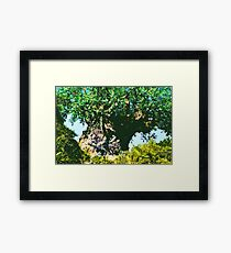 It's A Jungle Out There! Framed Print