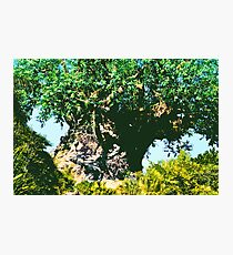 It's A Jungle Out There! Photographic Print