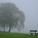 In the mist by Trish  Anderson