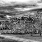 Barn Shell Monochrome by Wayne King