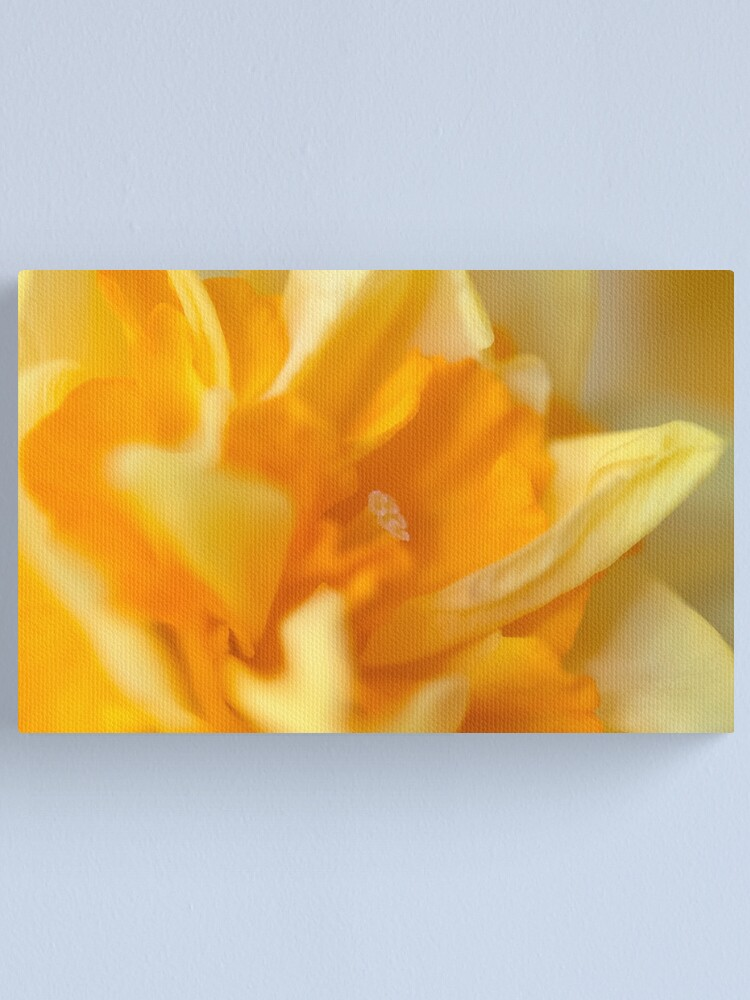Alternate view of Double Daffodil Canvas Print