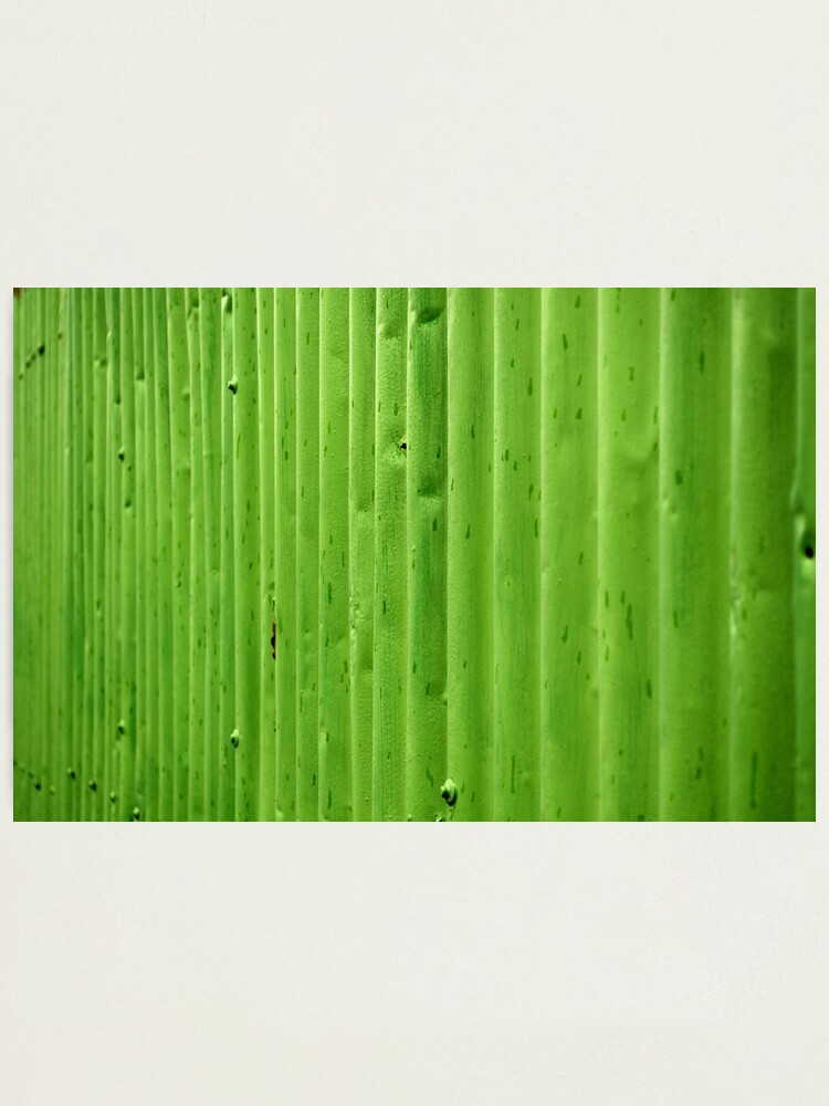 Alternate view of Green Ripples Photographic Print