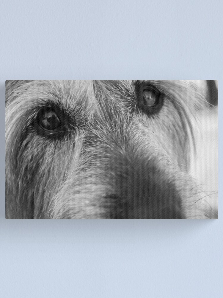 Alternate view of Thoughtful Canvas Print